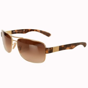 Ray Ban Tortoise Shell Gold Frame Glasses